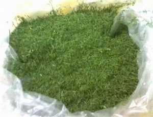 مرکز سبزی خشک فله
