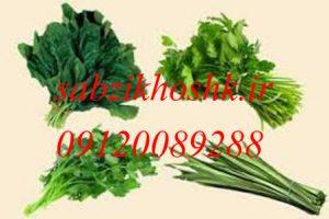 خرید و فروش سبزیجات خشک