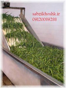 قیمت سبزی خشک صادراتی
