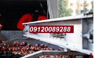 فروش رب انار صنعتی