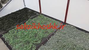 پخش سبزی خشک