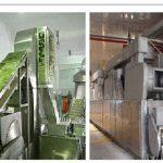 شرکت های تولید کننده سبزی خشک اصفهان