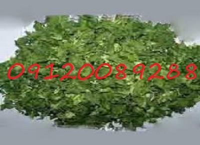 قیمت به روز سبزی خشک