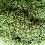 قیمت سبزی خشک ۹۸