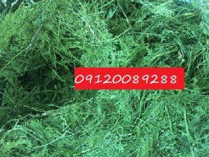 خرید و فروش سبزی خشک