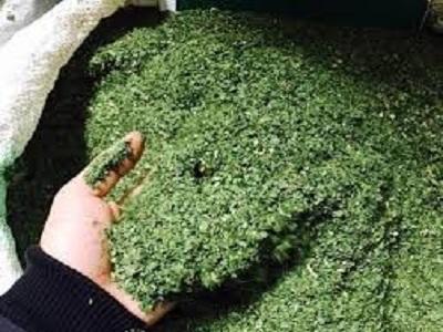 فروش سبزیجات خشک اصفهان