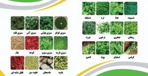 صادرات سبزی خشک به روسیه